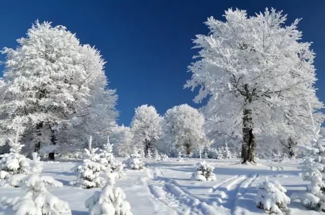 冬季模切飞标的靠谱解决方案
